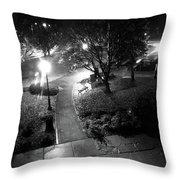 Memorial Park Throw Pillow