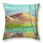 Memories Of Somewhere Out West Throw Pillow