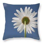 Memories Of Summer.. Throw Pillow