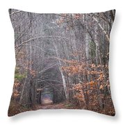 Memory Lane 1 Throw Pillow