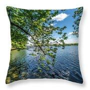 Mendota Lake Throw Pillow