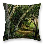 Mendoza Trail Throw Pillow