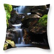 Mens Retreat Throw Pillow