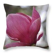 Mepkin Abbey Pink Magnolia Throw Pillow