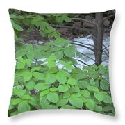 Merced In Yosemite Throw Pillow