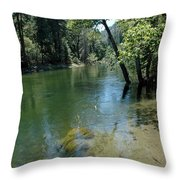 Merced River Banks Throw Pillow