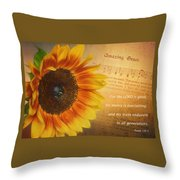 Mercy And Grace Throw Pillow