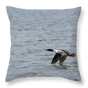 Merganser Duck Throw Pillow