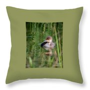 Merganser Duckling Throw Pillow