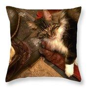 Merlin A True Mainer Throw Pillow
