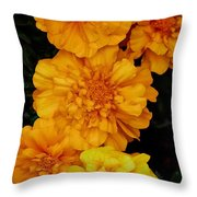 Merry In Gold Throw Pillow