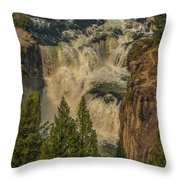 Mesa Falls In Summer Throw Pillow