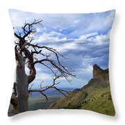 Mesa Verde Mood Throw Pillow