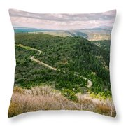Mesa Verde Park Overlook II Throw Pillow