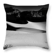 Mesquite Flats Panorama Throw Pillow