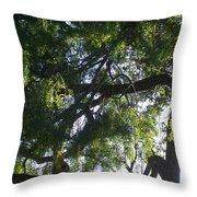 Mesquite Tangle Throw Pillow