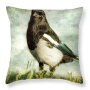 Message From The Magpie Throw Pillow by Belinda Greb