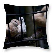 Messenger Of Peace Throw Pillow
