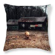 Messy Pig Farm Lot Throw Pillow