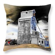 Metal Barn Throw Pillow
