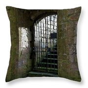 Metal Cage Door Throw Pillow