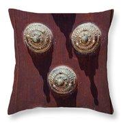 Metal Door Ornaments Throw Pillow