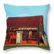 Metal House Throw Pillow