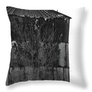 Metal Storage Throw Pillow