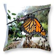 Metamorphosis Of The Monarch Throw Pillow