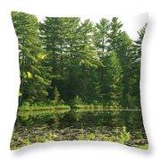 Mew Lake Algonquin Park Throw Pillow