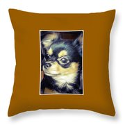 Mexican Chihuahua Puppy Throw Pillow