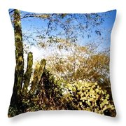 Mexican Country Road Throw Pillow
