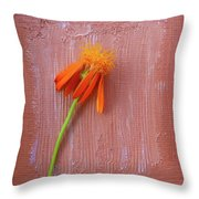 Mexican Flame Throw Pillow