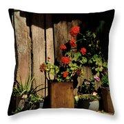 Mexican Geraniums Throw Pillow
