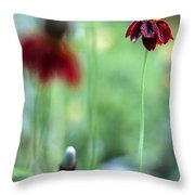 Mexican Hat Flower Throw Pillow