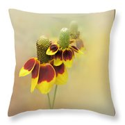 Mexican Hat II Throw Pillow