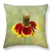 Mexican Hat IIi Throw Pillow