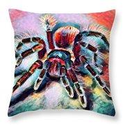 Mexican Red Knee Tarantula Throw Pillow