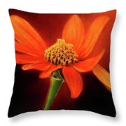 Mexican Sunflower Throw Pillow