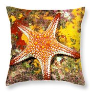 Mexico, Gulf Sea Star Throw Pillow