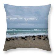 Miami Beach Flock Of Birds Throw Pillow