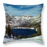Mica Lake Throw Pillow