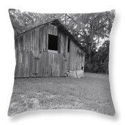 Micanopy Barn Throw Pillow