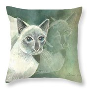 Michael Campbell Reflects Throw Pillow