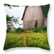 Michigan Barn Throw Pillow by Michael Peychich
