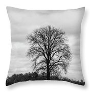 Michigan Lonley Tree  Throw Pillow
