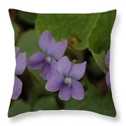 Michigan Purple Spring Flowers Throw Pillow