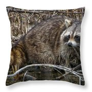 Michigan Raccoon Throw Pillow