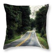 Michigan Rural Roadway In September Throw Pillow