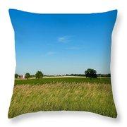 Michigan Summer Fields Throw Pillow